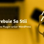 Ce Trebuie Sa Stii Despre Folosirea Plugin-urilor WordPress